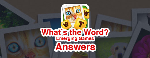 Whats the words emerging games answers cover