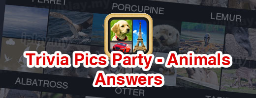 Trivia Pics Party Answers Animals Cover