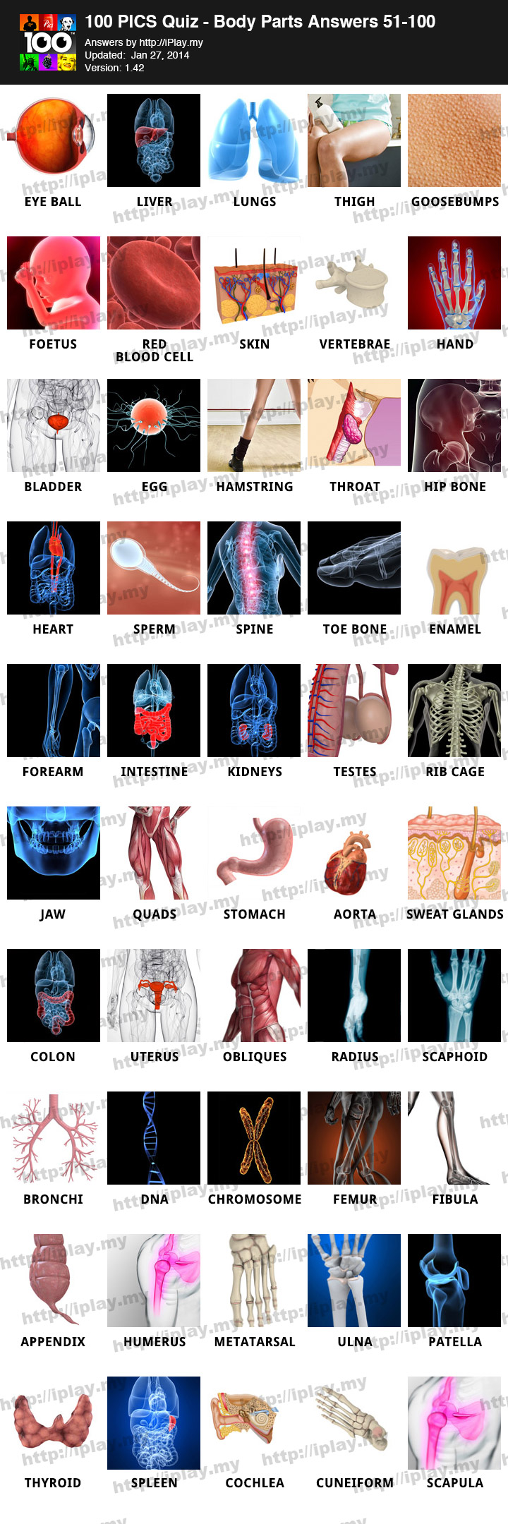 100 pics body parts cheats