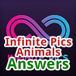 Infinite-Pics-Animals-Featured